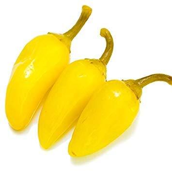 Potseed Samen Keimung: 50 - Samen: Gelb Jalapeno - eine reiche Quelle von Vitamin-C !! Große Hersteller !! Geben Sie Schiff frei