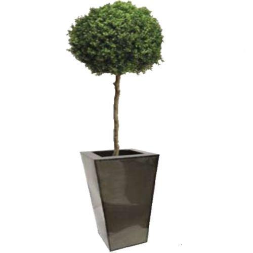 Vase Design Antara Modèle Medium