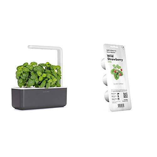 Click & Grow 4742793007229 Intelligente Garden 3, Grigio Scuro, 30x28x10 cm & Click & Grow Recharge pour jardinière Smart Herb Garden-Fraises des Bois Strawberry Refill 3-Pack, Verde, 7x7x21 cm