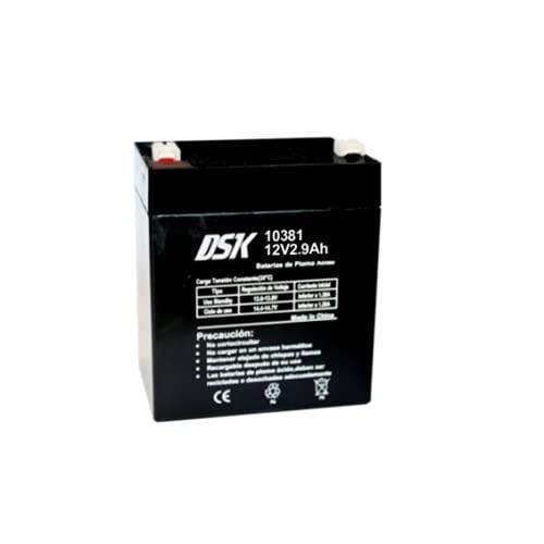 DSK 10381 - Bateria Plomo AGM Recargable y Sellada con 12V y 2,9Ah. Batería Ideal para Alarmas del Hogar e Industria, Juguetes Eléctricos para niños, Aparatos de Movilidad, Patinetes, Cercados