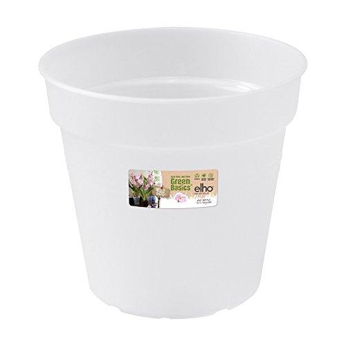 Elho 2055290 - Conceptos básicos de orquídeas Verdes del Maceta Creciente Transparentes de 13 x 13...