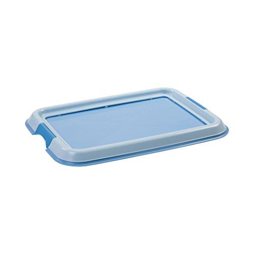 Iris Ohyama, entrenamiento del perro / bandeja de la educación a la limpieza - Pet Tray - FT-495, plástico, azul, 49 x 36,5 x 3,2 cm