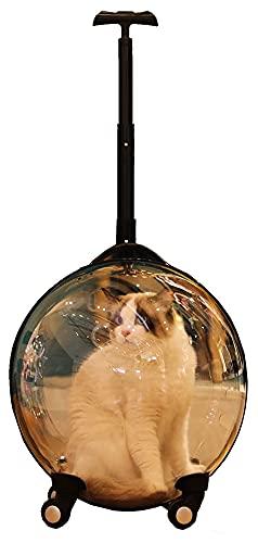 M3 Decorium Maleta Multifuncional del carretón de la Carretilla de la Carretilla Four Seasons Dog Transparent Pet Maleta Maleta Cat Mochila Adecuada