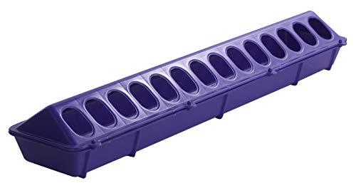 Little Giant Plastic Flip-Top Poultry Feeder (20-inch) Heavy Duty Plastic Feeding Tray with Holes (Purple) (Item No. 820PURPLE)