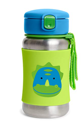 Skip Hop Toddler Sippy Cup with Straw, Zoo Stainless Steel Straw Bottle, Dino