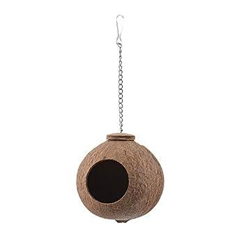 Roblue Nid d'oiseau Nid de Perroquet Suspendu Forme Coquille de Noix de Coco en Bois pour Petit Animal Domestique
