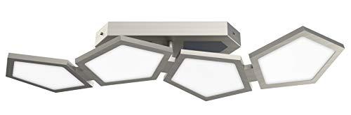 Evotec POLY LED Deckenleuchte 4-flammig / 2700-6500K / 40W / 4252 Lumen/Lichtsteuerung per Fernbedienung, Aluminium, 40 W, Transparent, Small