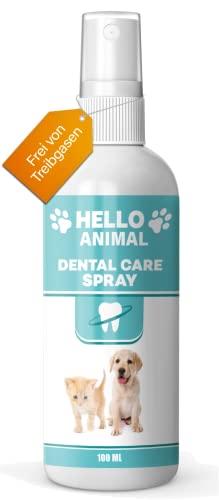 Hello Animal NEU: HelloAnimal® DENTAL Bild