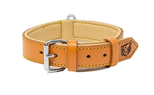 Riparo Echtes Leder Verstellbares K-9 Hundehalsband mit Zusätzlicher Verstärkung (S: 1,9CM Breit für 28CM - 34,3CM Hals, Kamel)
