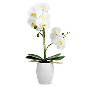 Dahlia Realistic Orchid Artificial Flower Arrangement with Etched White Ceramic Pot, White
