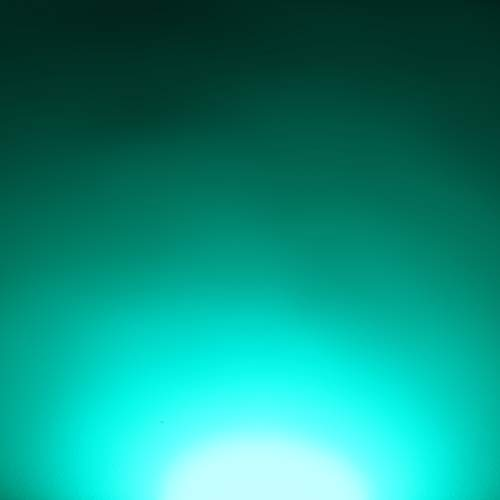 Crecen luces y proyectos electr/ónicos 1W Componente LED de Alta Potencia Amarillo 595nm Diodo Emisor de Luz en 20mm placa de circuito impreso PCB 1 x LED Iluminaci/ón del Acuario