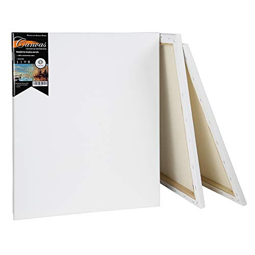"""conda Artist Acid Free Stretched Canvas 16"""" X20"""" 5 Pack 5/8 inch Professional Quality Frame Canvas"""