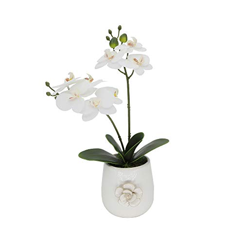 Flora Bunda Artificial Orchid Flower in Ceramic Vase Real Touch Fake Phalaenopsis Orchid Potted Plant in White Vase for Wedding Centerpiece Office Home Desktop Room Indoor Decoration, 15' Tall