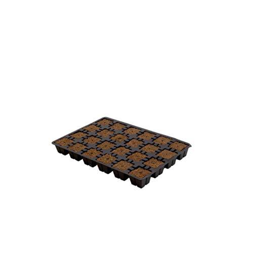 Bandeja semillero Eazy Gardening Plug - 24 Alvéolos (30x20cm)