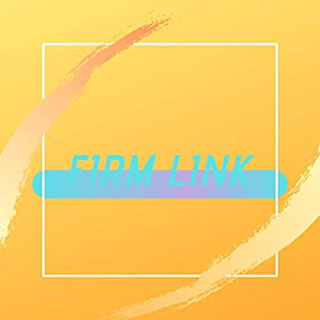 Firm Link