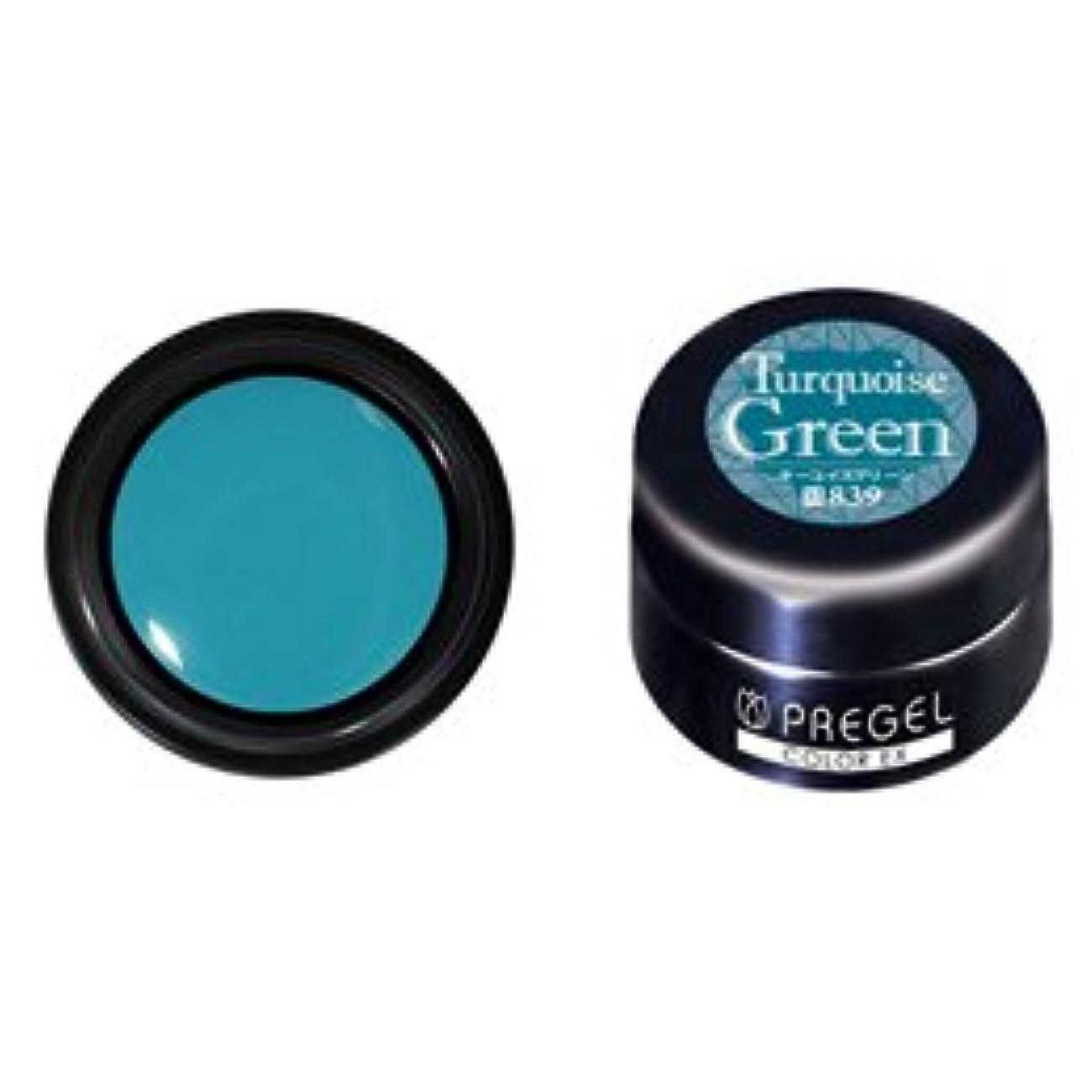 チロ小競り合いシリングPRE GEL プリジェル カラーEX ターコイズグリーン 3g PG-CE839