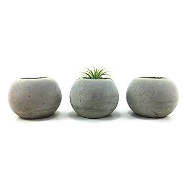 ORB Concrete Succulent Planters/Air Plant Holders. (Set of 3) Natural Gray.Cement Succulent pots. Modern Planter set