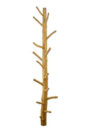 Kinaree Wand Garderobe Baumstamm Mangosteen | Naturbelassene Wandgarderobe aus Massivholz | Handarbeit & Unikat | Stabiler Holz Kleiderständer