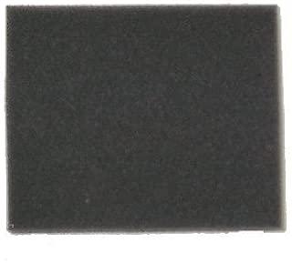Bissell 2031073 Filter (Aftermarket)
