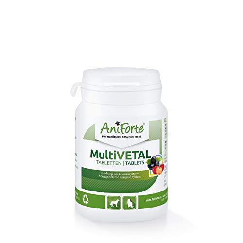 AniForte MultiVETAL Multivitamínico para Perros y Gatos 100 Comprimidos – Multivitamínico y nutrientes Naturales para un Suministro óptimo, Ayuda para Las defensas Naturales