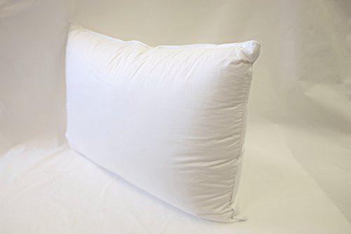 European 800 Fill Power White Goose Down Pillow. (Queen)