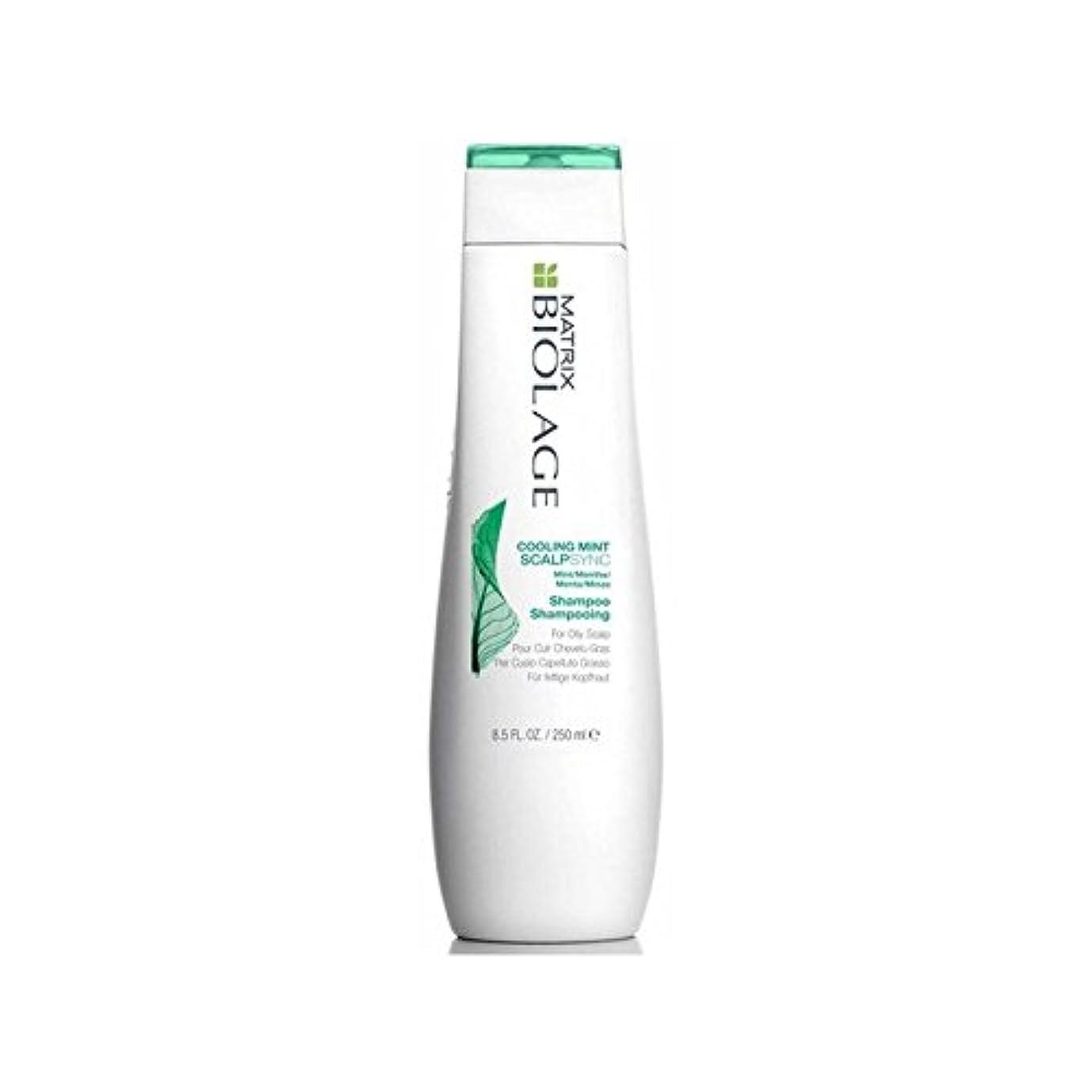 有利投げ捨てる上がるミントシャンプー(250ミリリットル)を冷却マトリックスバイオレイジの頭皮 x4 - Matrix Biolage Scalptherapie Scalp Cooling Mint Shampoo (250ml) (Pack of 4) [並行輸入品]