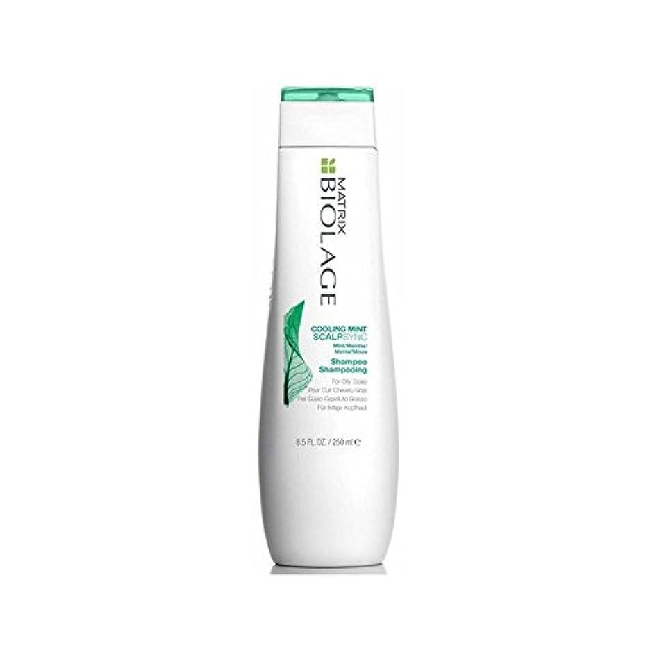 調停者然とした横向きミントシャンプー(250ミリリットル)を冷却マトリックスバイオレイジの頭皮 x4 - Matrix Biolage Scalptherapie Scalp Cooling Mint Shampoo (250ml) (Pack of 4) [並行輸入品]