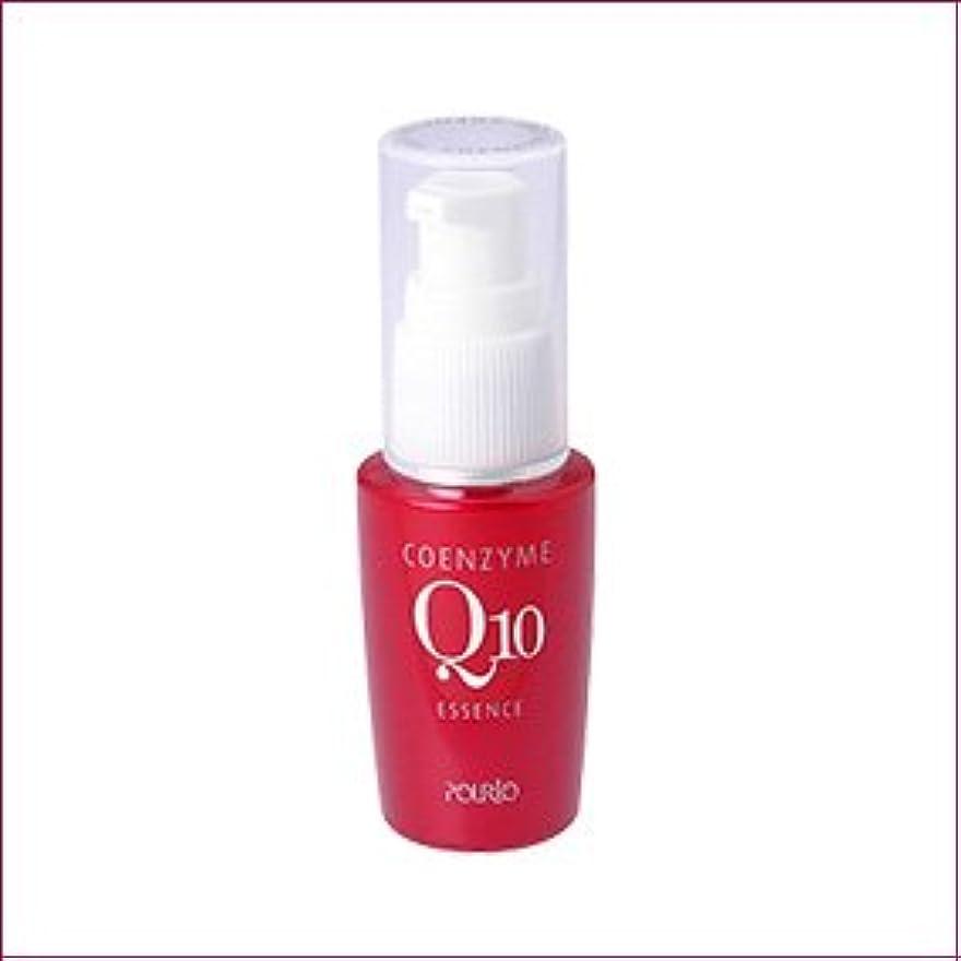 ペインティング遺産チャンバーポルトA Q10美容液