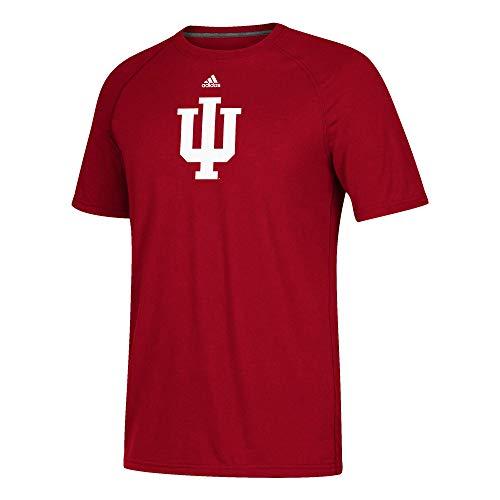 adidas Indiana Hoosiers Adult Logo Ultimate Tee Climalite Shirt (Medium)