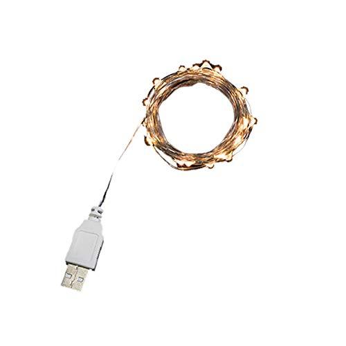 Muzhili3 LED-Lichterkette, 2 m, Kupferdraht, USB-Ladekabel, für Weihnachten, Party, Hochzeit, Dekoration, Lampe – Warmweiß