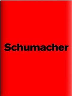 Michael Schumacher: Die offizielle und autorisierte Inside Story zum Karriere-Ende
