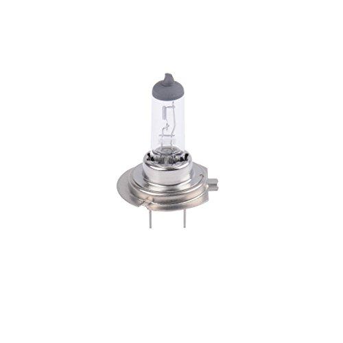 Ampoule 12V 55W PX26d, H7 Halogène