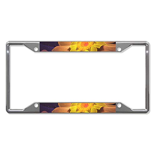 Beautiful Violet Peach Primrose Fractal Flowers Car License Plate Frame - Chrome Metal Auto License Plate Frame Tag Holder Frame Cover - 12