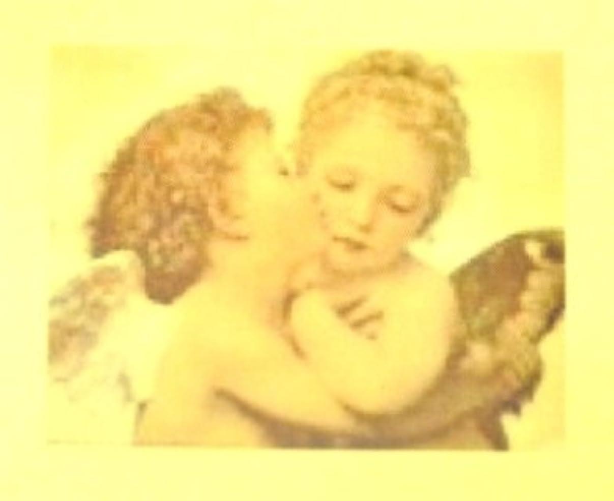 衛星スピリチュアル順応性のあるエンジェル?絵画【ロココ ネイルアートシール】天使(1)/1シート1枚(半透明)