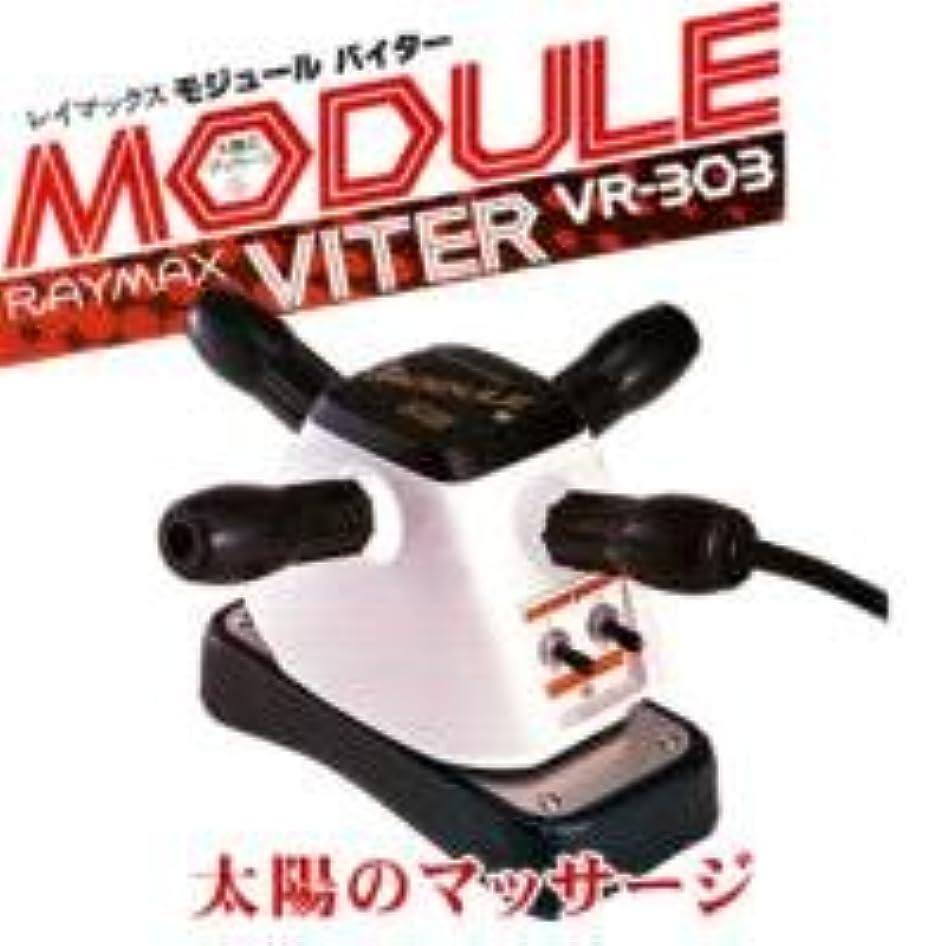 いわゆるインフラ行くレイマックス モジュール バイター VR-303