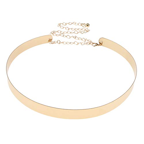 IPOTCH Correa de Cintura de Espejo Metal Adorno para Vestido de Noche Túnica Camisa Larga - dorado, 2cm