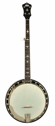 Recording King RK-R36-BR Madison Tone Ring Banjo, Mahogany Resonator