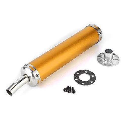 Auspuff Schalldämpfer Rohr für Motorräder, Auspuff Schalldämpfer aus Edelstahl 20 mm (0,8 Zoll) Modifizierte Teile für 2 Takt Motorräder(Gold)