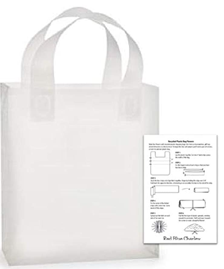 24 Plastic Shopping Bags Clear Frosted Gift Handle Bag (Debbie - 10x5x13)