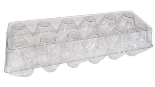 Clear Plastic Super Jumbo Tri-Fold 12-Egg Duck Egg Carton - 75 Pack