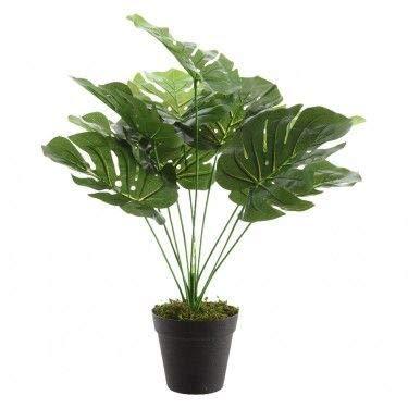 Uaw Planta Artificial de Interior (Monstera)