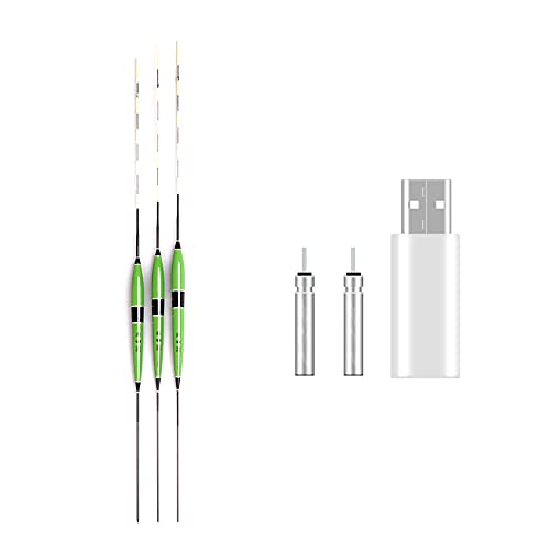 3 StüCk Angelposen LED Posen Angeln Bissanzeiger, Angeln Schwimmer Kit Mit CR425 Batterie Set, Leuchtpose Angelposen FüR Nachtangeln Schwimmt Posen (Doppel Loch) (A+B)