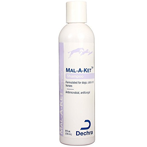 Dechra Mal-a-ket Formulated for Dogs, Cats and Horses Antibacterial and Antifungal Shampoo 8oz, White