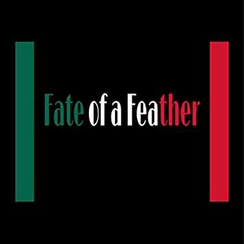 Fate of a Feather