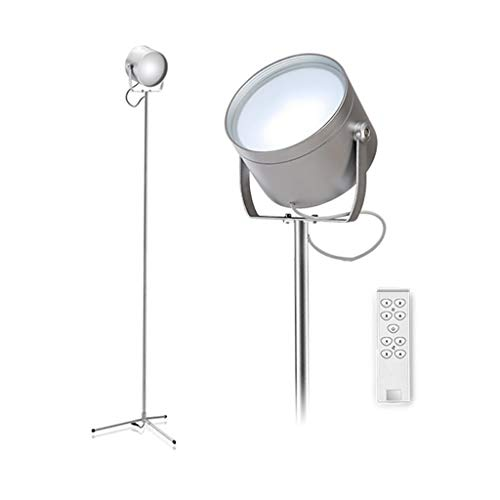 LED Staande lamp dimbaar 9W Office Living Room Leeslamp flexibele zwanenhals licht met afstandbediening Slaapkamer Eye-Care Light DZE (Color : Silver, Size : 31.5cm*146.5cm)