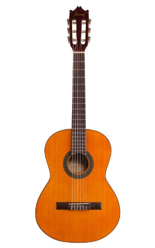 Ibanez 6-string Classical Guitar