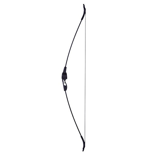 Geologic Discovery 100 Black Bow