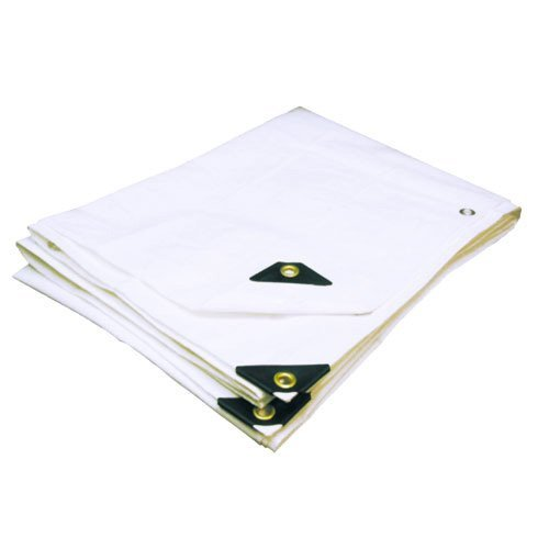 24'X40' EXTRA Heavy Duty 12 mil (White) Tarp 3 Ply Coated Reinforced Canopy 6 oz 3 Layer (Includes Tarps Tools and Toys Maintenance Manual)