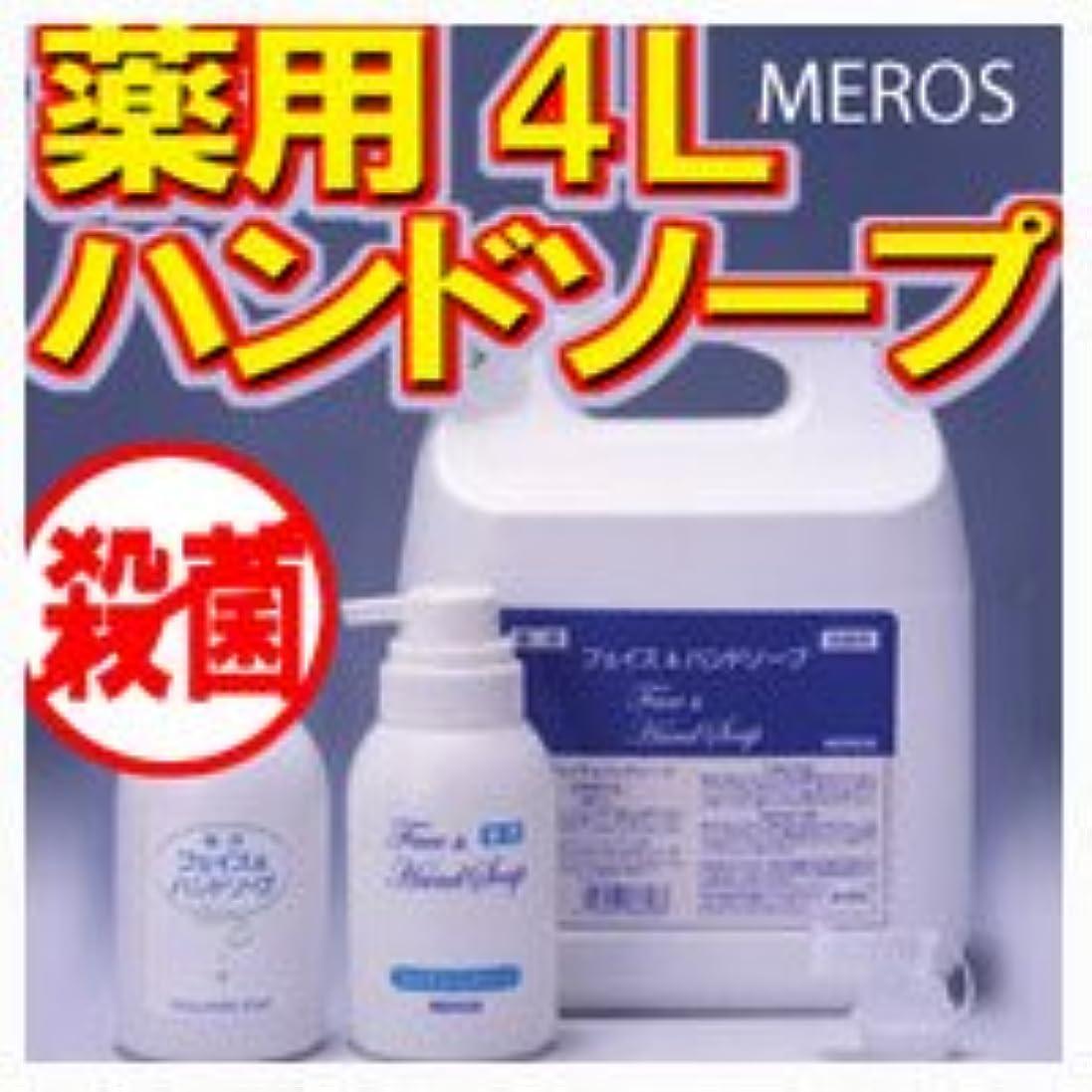コンデンサーズーム吐くメロス 薬用ハンドソープ 4L 【泡ポンプボトル付き】