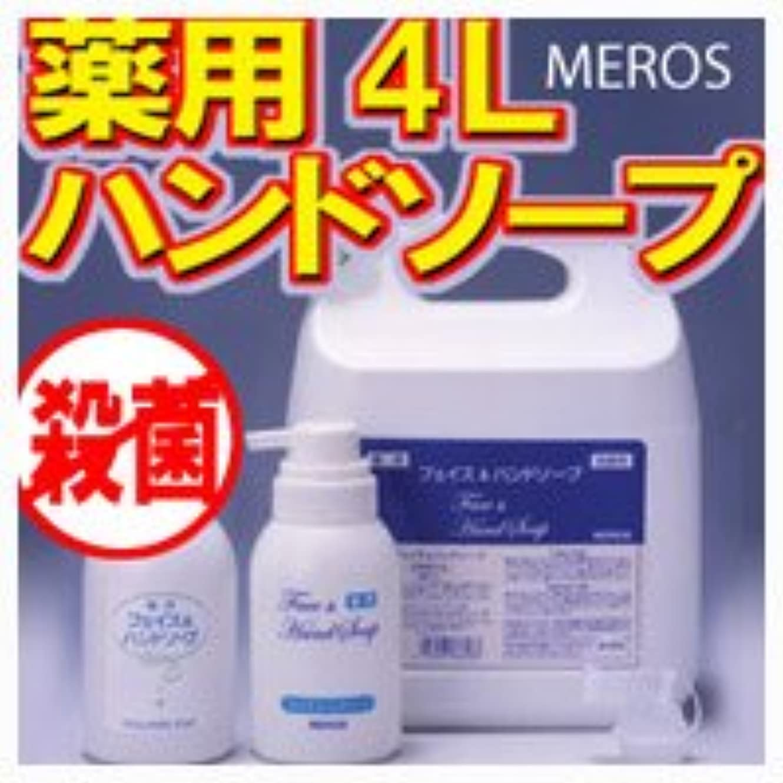 基礎理論雰囲気切手メロス 薬用ハンドソープ 4L 【泡ポンプボトル付き】